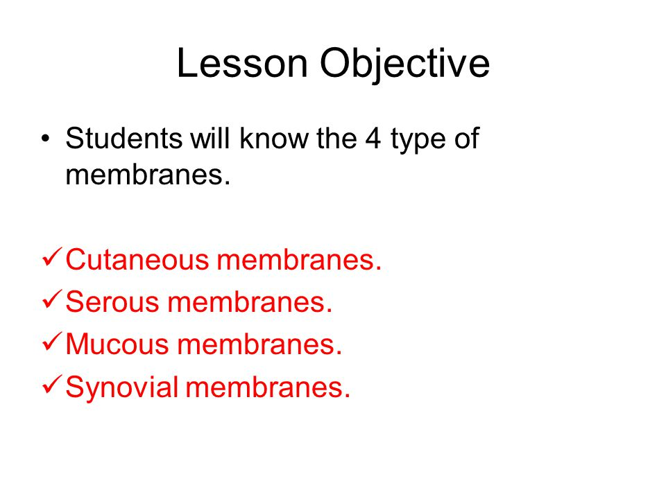 Lesson Objective Students will know the 4 type of membranes.