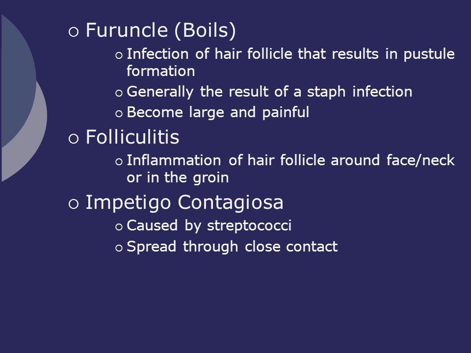 Furuncle (Boils) Folliculitis Impetigo Contagiosa