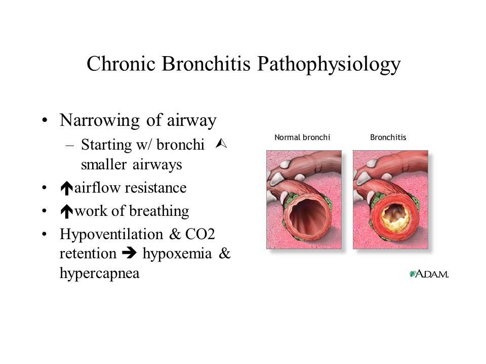 Chronic Bronchitis Pathophysiology