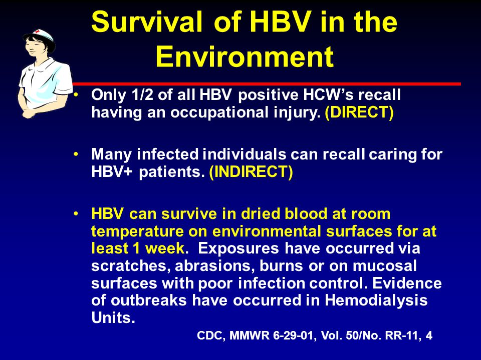 Survival of HBV in the Environment