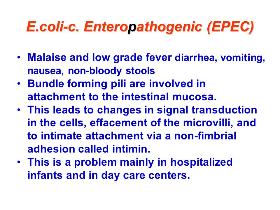 E.coli-c. Enteropathogenic (EPEC)