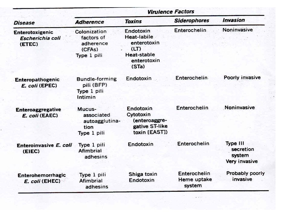 Summary of E.coli strains that cause gastroenteritis.