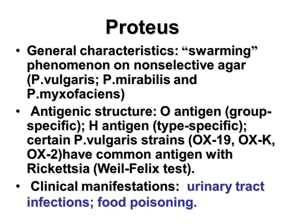 Proteus General characteristics: swarming phenomenon on nonselective agar (P.vulgaris; P.mirabilis and P.myxofaciens)