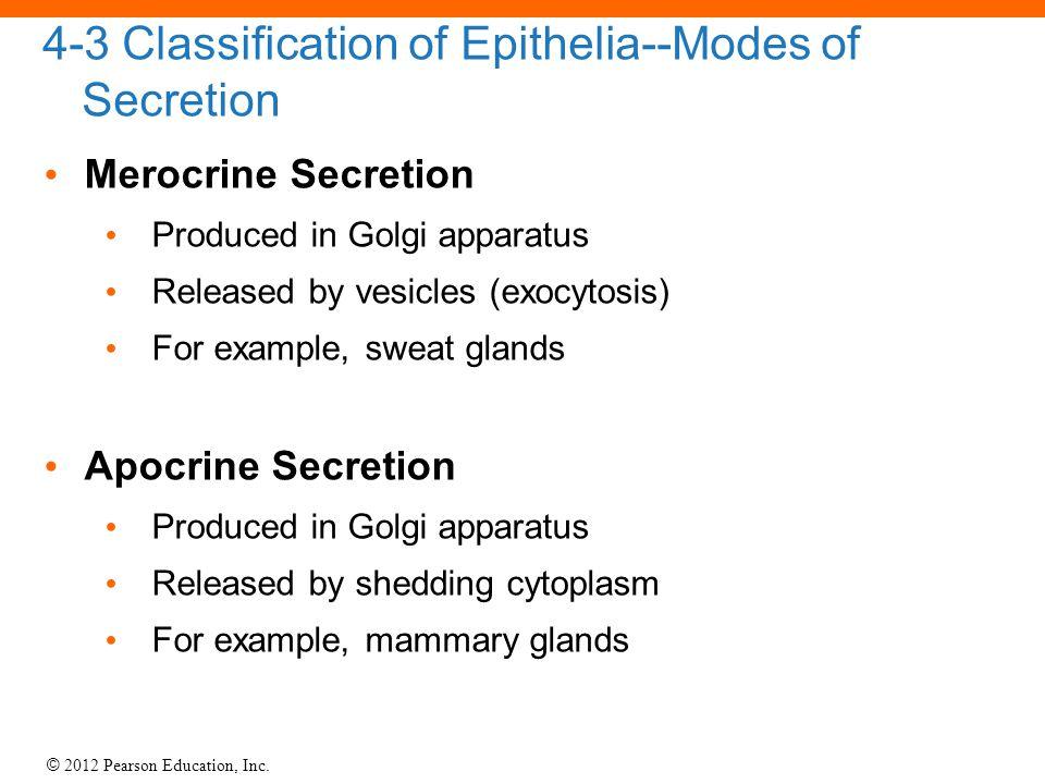 4-3 Classification of Epithelia--Modes of Secretion