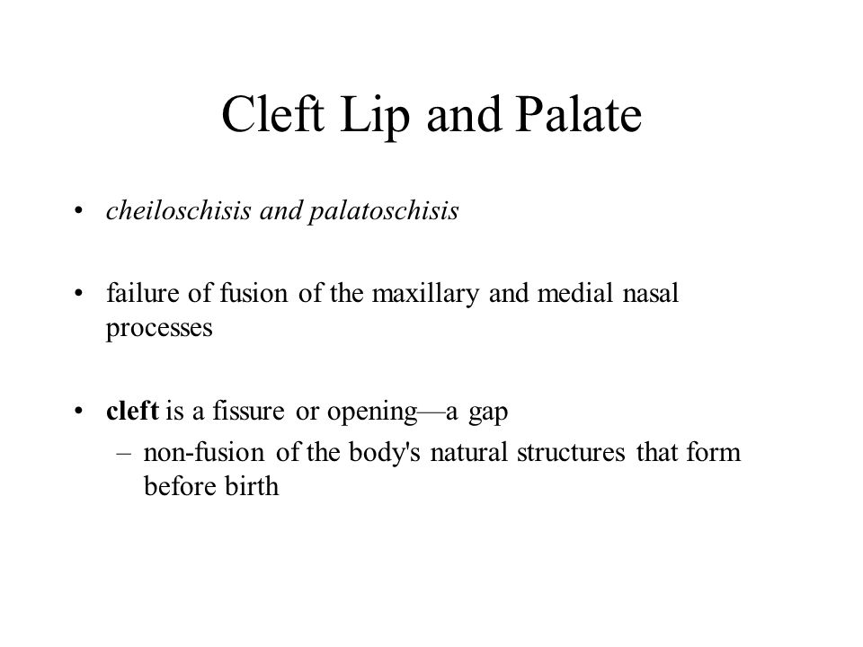 Cleft Lip and Palate cheiloschisis and palatoschisis