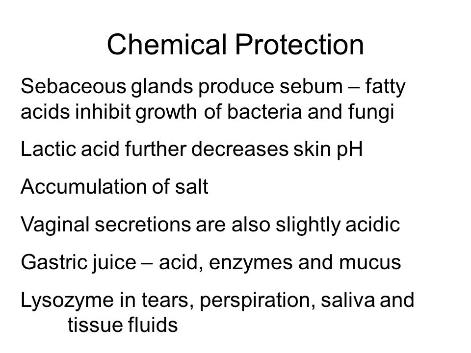 Chemical Protection Sebaceous glands produce sebum – fatty acids inhibit growth of bacteria and fungi.