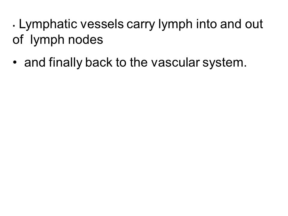 and finally back to the vascular system.