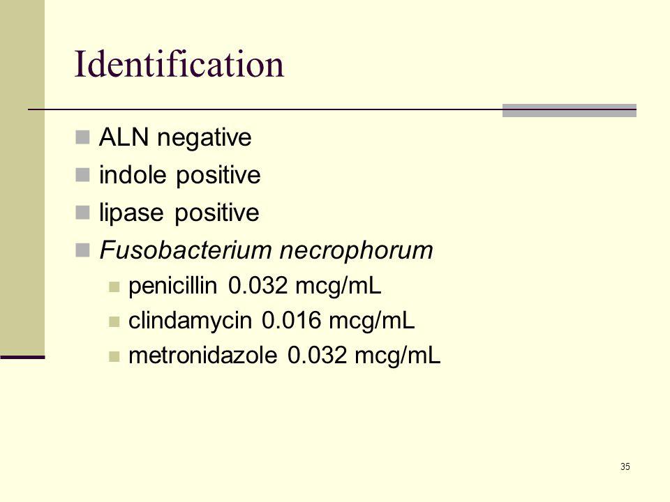 Identification ALN negative indole positive lipase positive