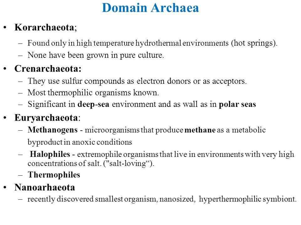 Domain Archaea Korarchaeota; Crenarchaeota: Euryarchaeota:
