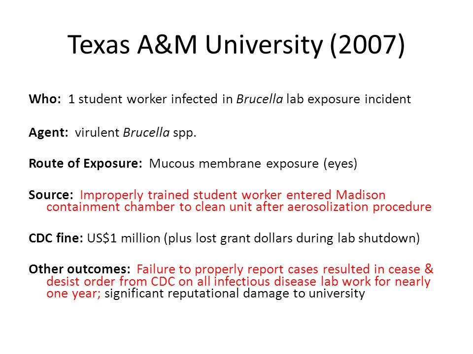 Texas A&M University (2007)