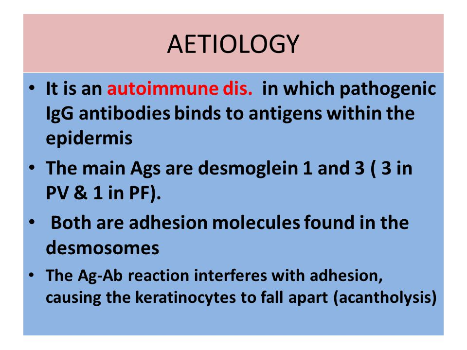 AETIOLOGY It is an autoimmune dis. in which pathogenic IgG antibodies binds to antigens within the epidermis.
