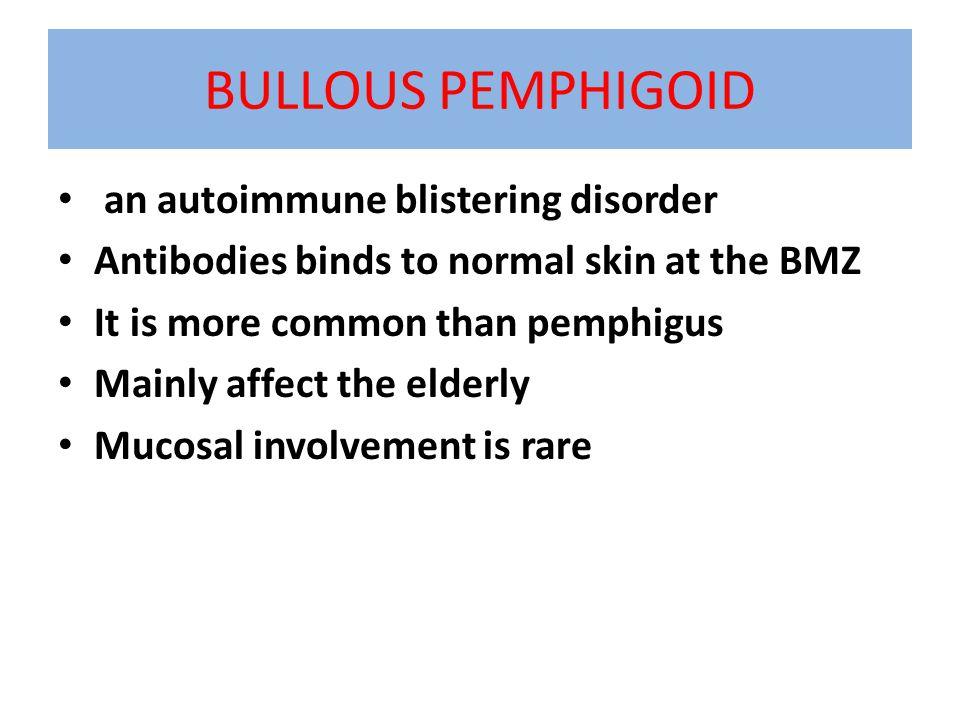 BULLOUS PEMPHIGOID an autoimmune blistering disorder
