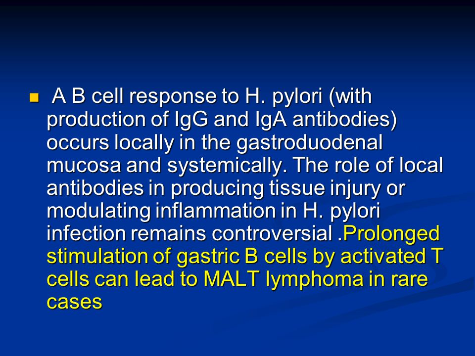 A B cell response to H.