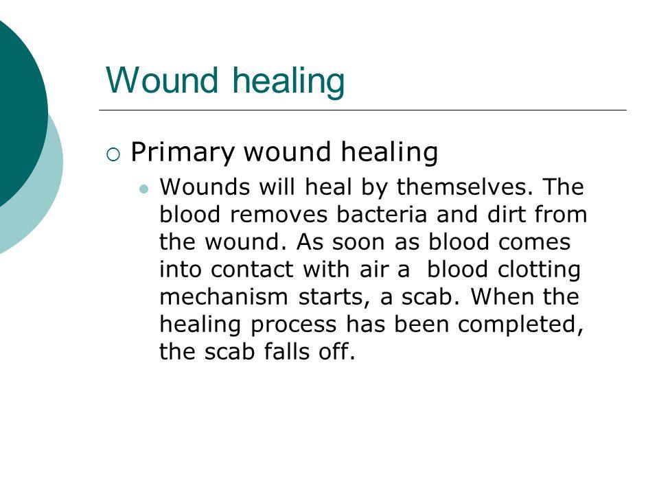 Wound healing Primary wound healing