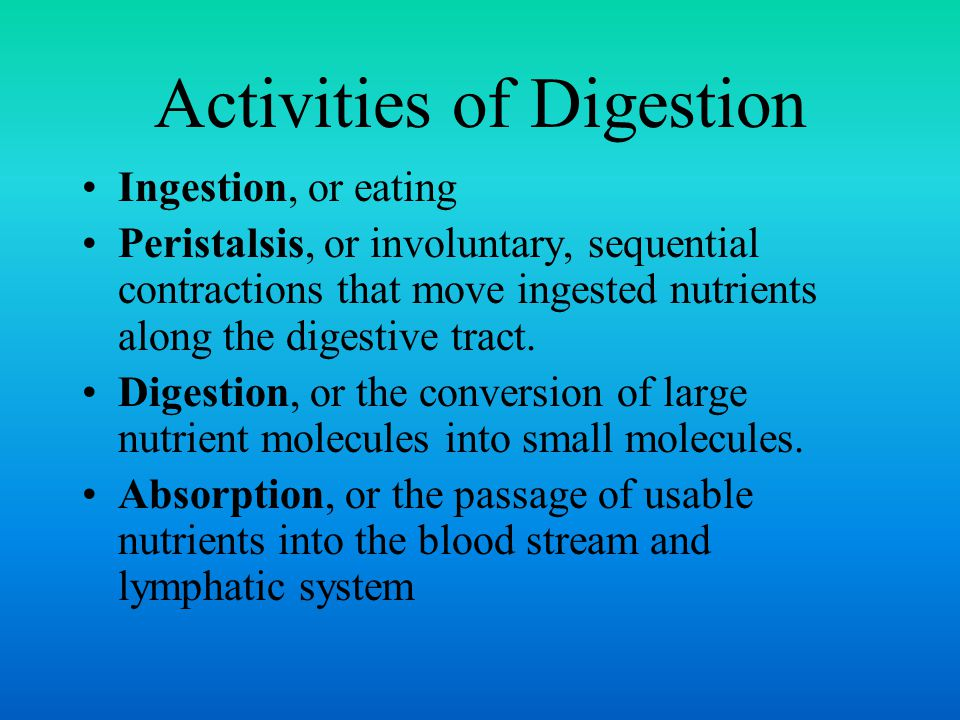 Activities of Digestion