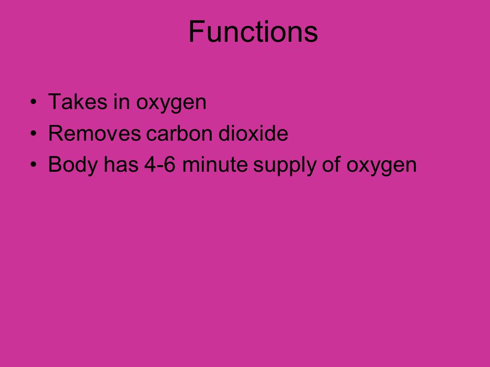 Functions Takes in oxygen Removes carbon dioxide