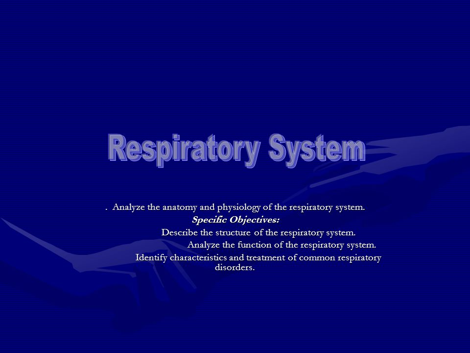 Respiratory System . Analyze the anatomy and physiology of the respiratory system. Specific Objectives: