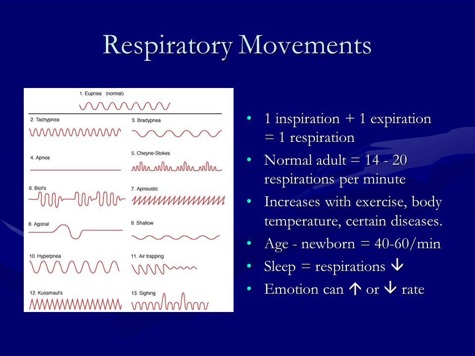 Respiratory Movements