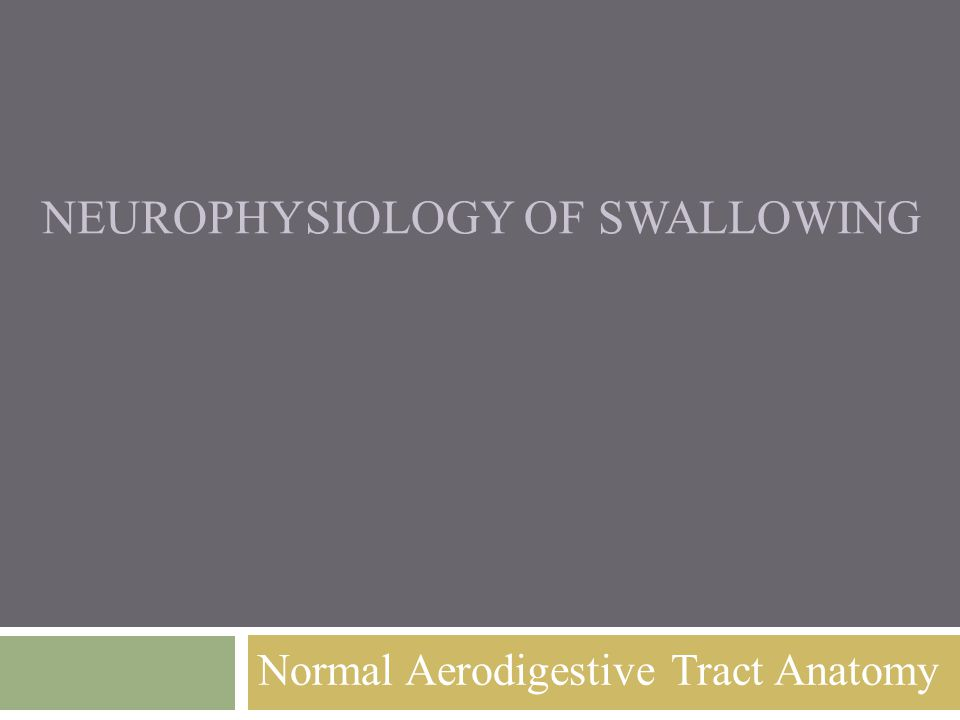 Neurophysiology of Swallowing