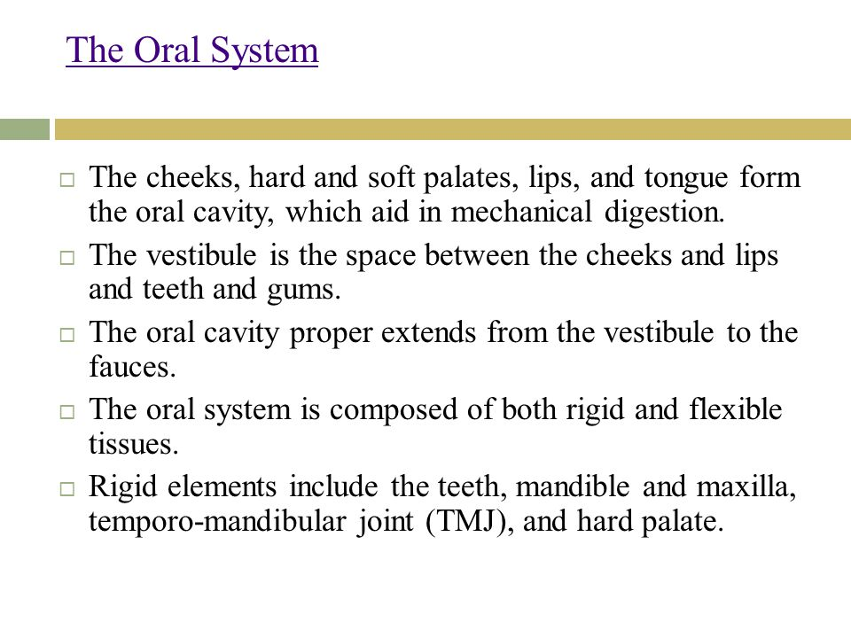 The Oral System The cheeks, hard and soft palates, lips, and tongue form the oral cavity, which aid in mechanical digestion.