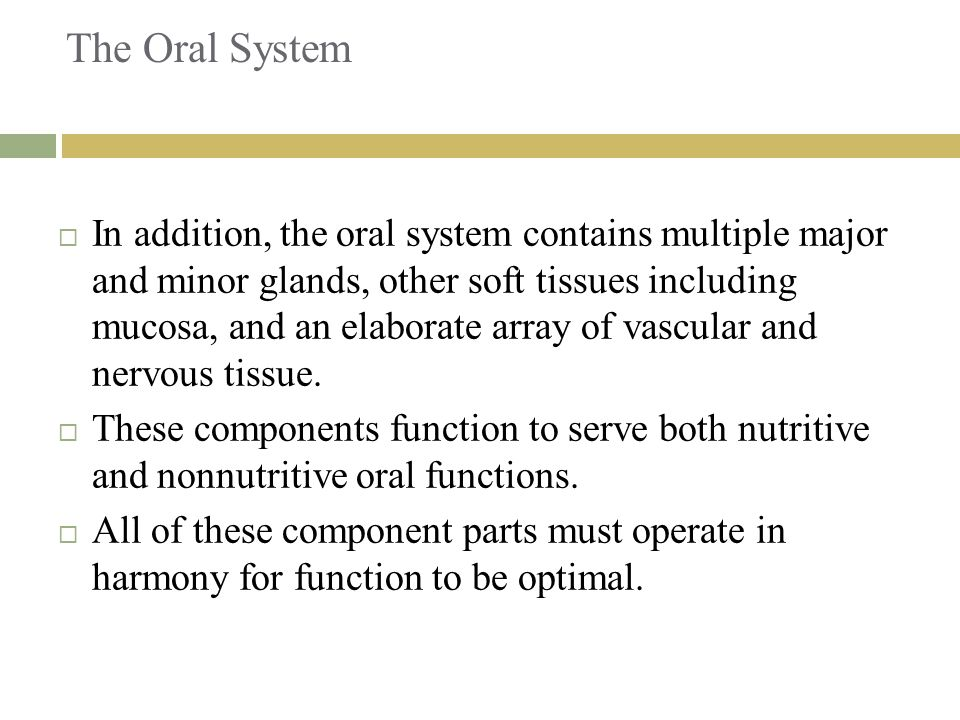 The Oral System