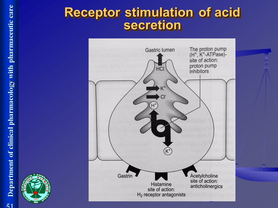 Receptor stimulation of acid secretion