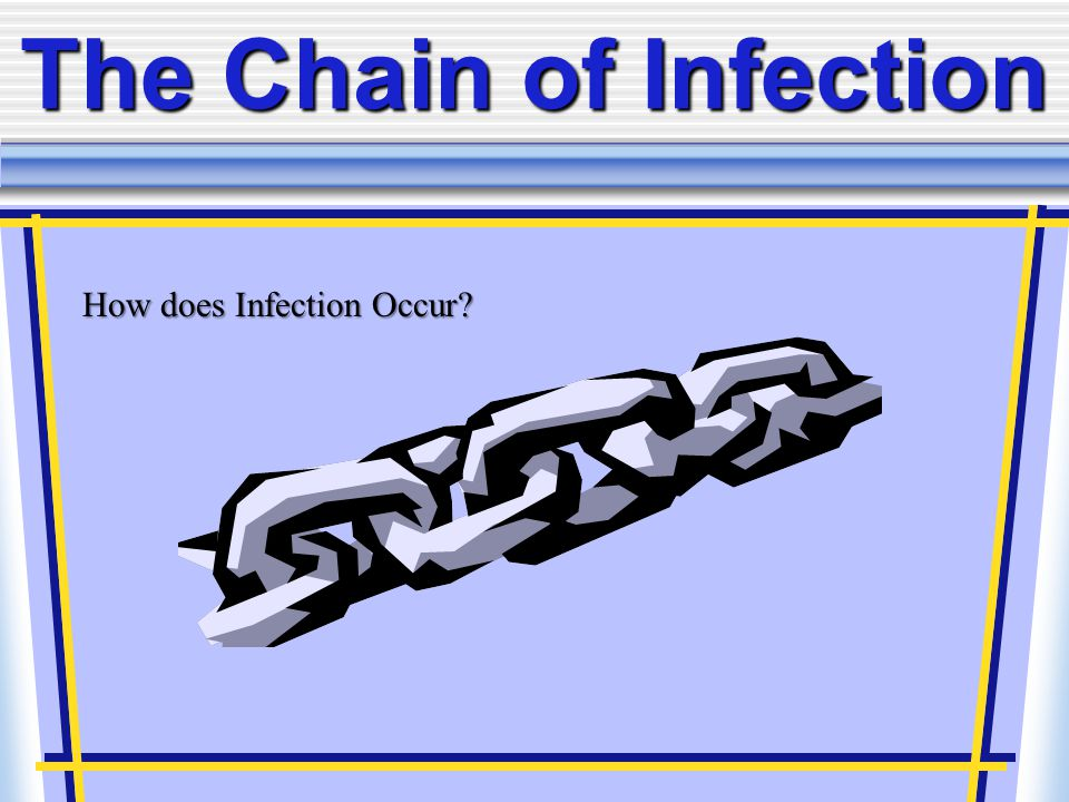 The Chain of Infection How does Infection Occur