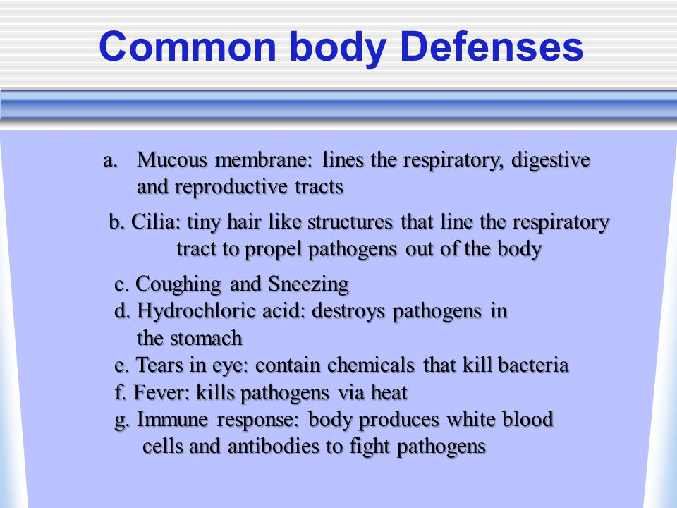 Common body Defenses Mucous membrane: lines the respiratory, digestive