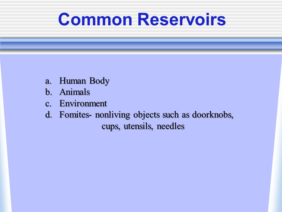 Common Reservoirs Human Body Animals Environment