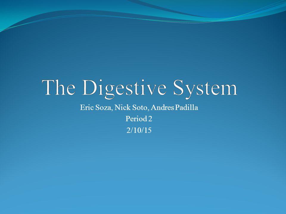 Eric Soza, Nick Soto, Andres Padilla Period 2 2/10/15
