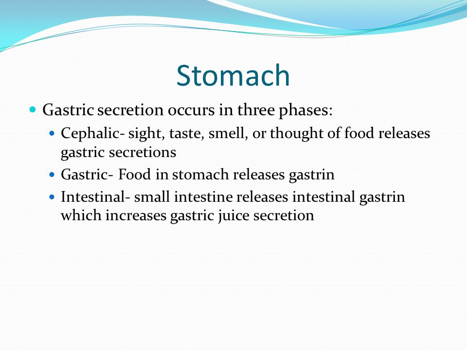 Stomach Gastric secretion occurs in three phases: