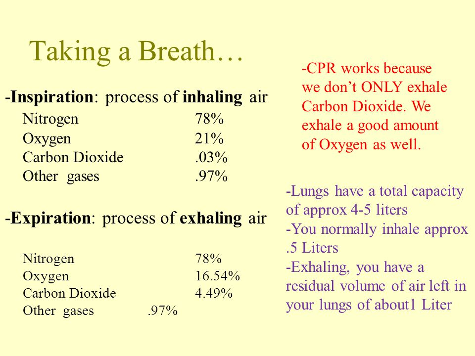 Taking a Breath… -Inspiration: process of inhaling air Nitrogen 78%