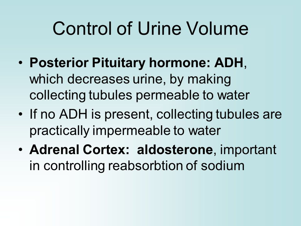 Control of Urine Volume