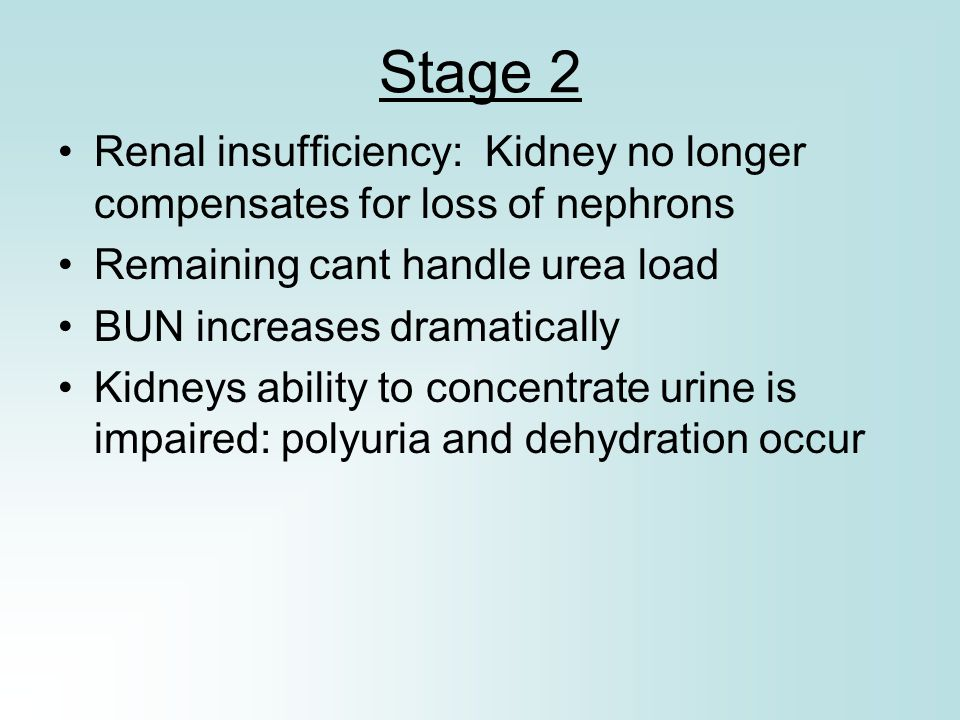 Stage 2 Renal insufficiency: Kidney no longer compensates for loss of nephrons. Remaining cant handle urea load.