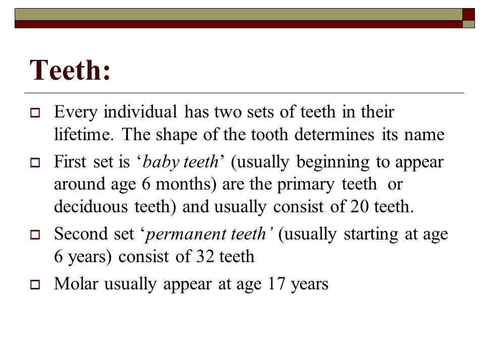 Teeth: Every individual has two sets of teeth in their lifetime. The shape of the tooth determines its name.