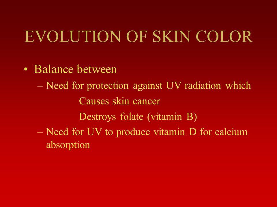 EVOLUTION OF SKIN COLOR