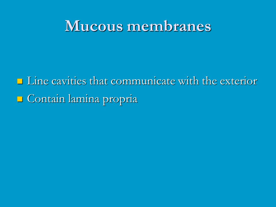 Mucous membranes Line cavities that communicate with the exterior