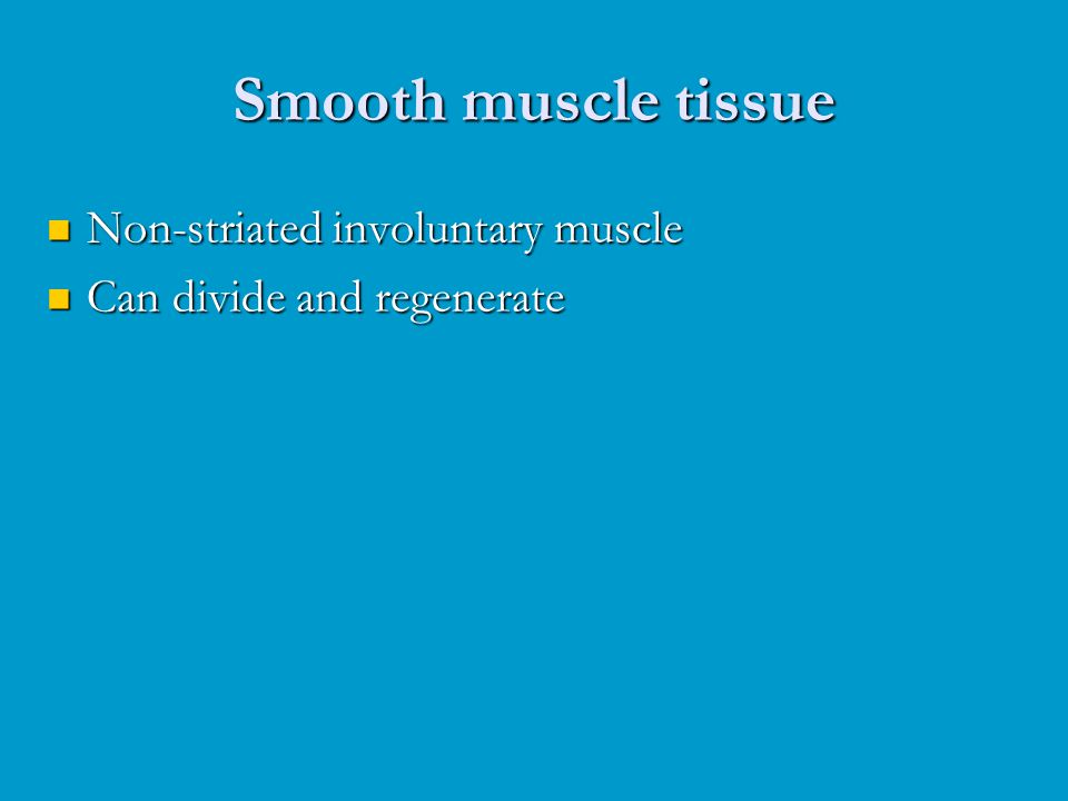 Smooth muscle tissue Non-striated involuntary muscle