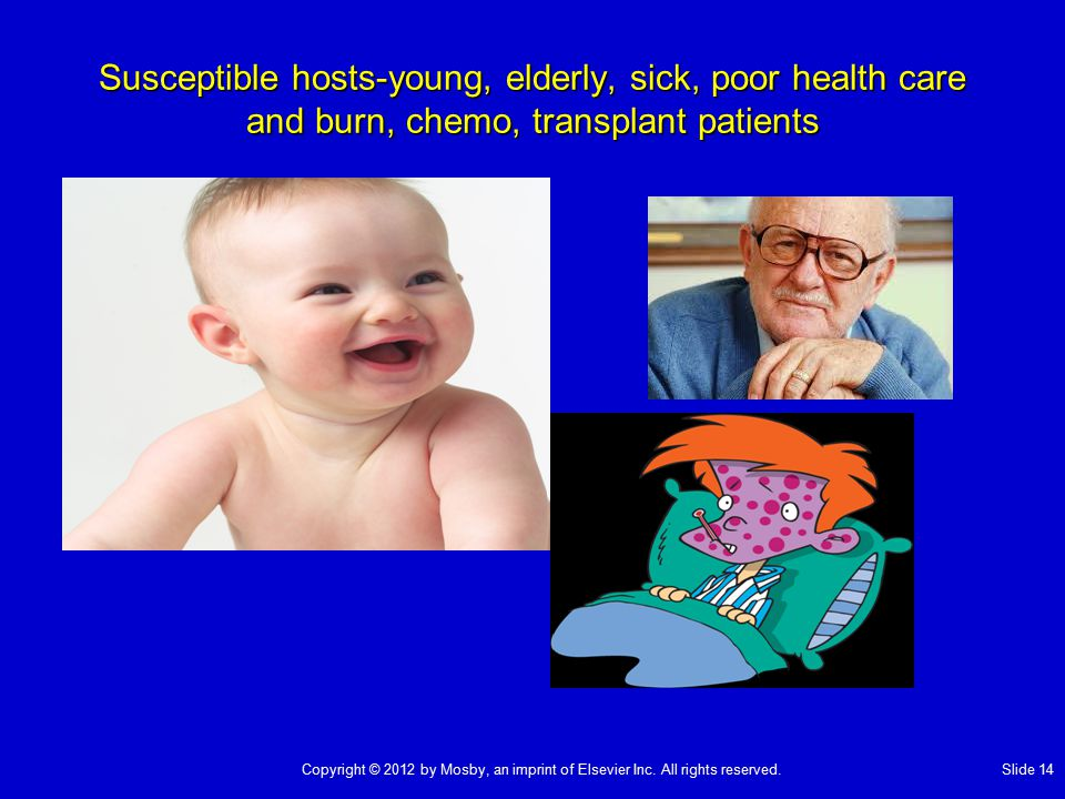 Susceptible hosts-young, elderly, sick, poor health care and burn, chemo, transplant patients