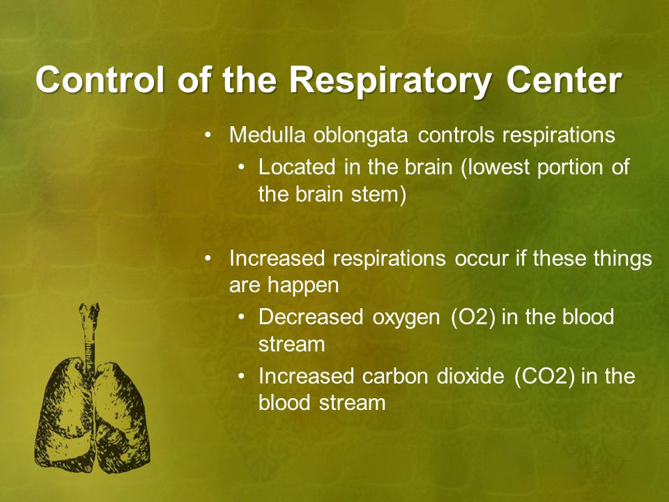 Control of the Respiratory Center