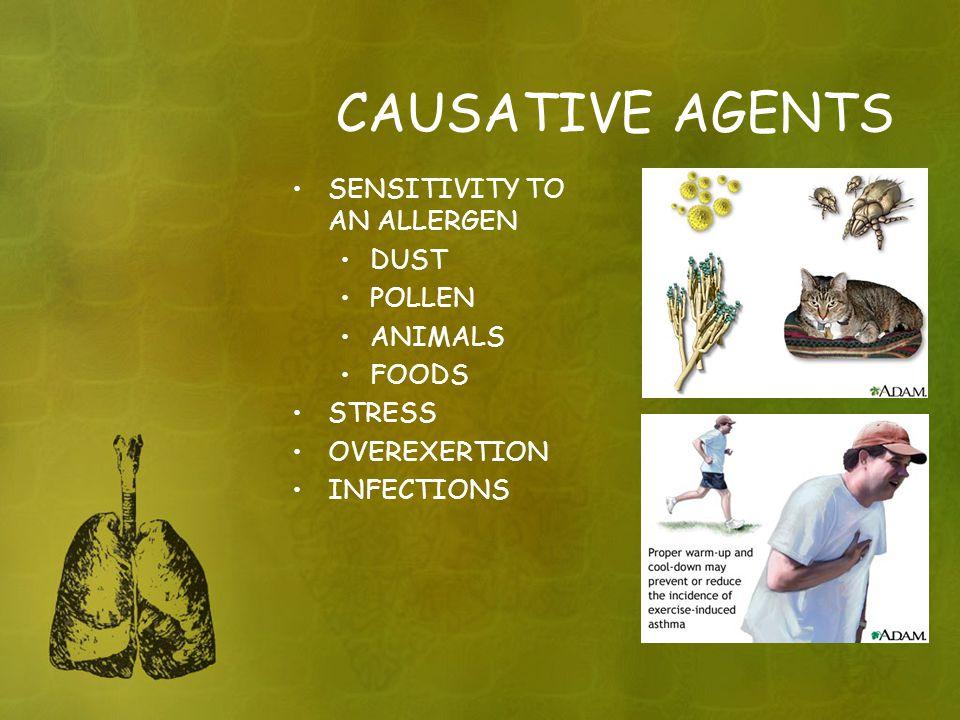CAUSATIVE AGENTS SENSITIVITY TO AN ALLERGEN DUST POLLEN ANIMALS FOODS