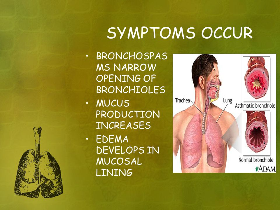 SYMPTOMS OCCUR BRONCHOSPASMS NARROW OPENING OF BRONCHIOLES