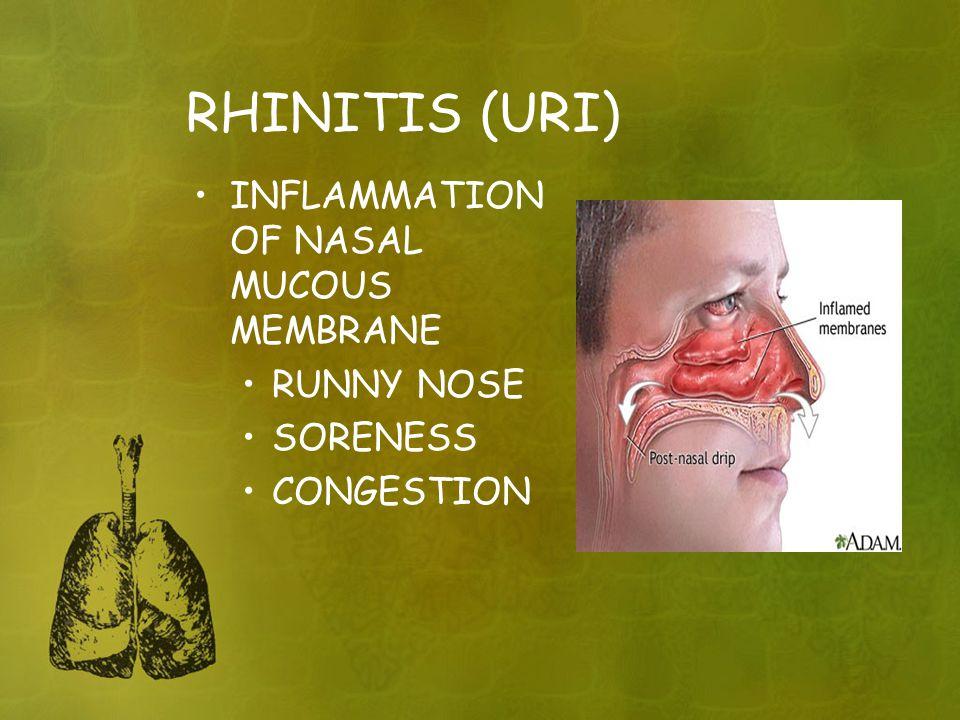 RHINITIS (URI) INFLAMMATION OF NASAL MUCOUS MEMBRANE RUNNY NOSE