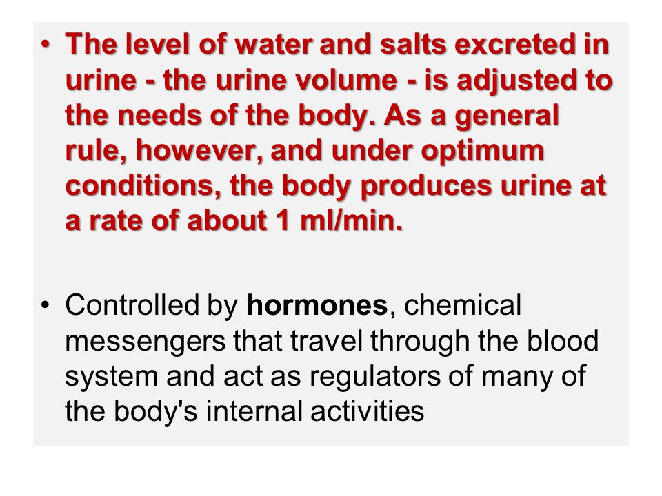The level of water and salts excreted in urine - the urine volume - is adjusted to the needs of the body. As a general rule, however, and under optimum conditions, the body produces urine at a rate of about 1 ml/min.