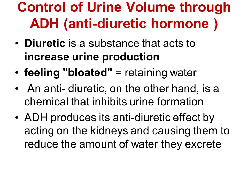 Control of Urine Volume through ADH (anti-diuretic hormone )