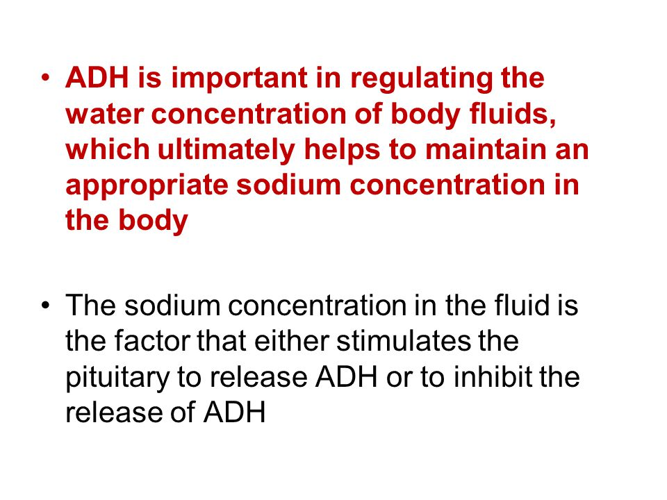 ADH is important in regulating the water concentration of body fluids, which ultimately helps to maintain an appropriate sodium concentration in the body