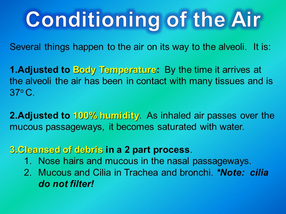 Conditioning of the Air