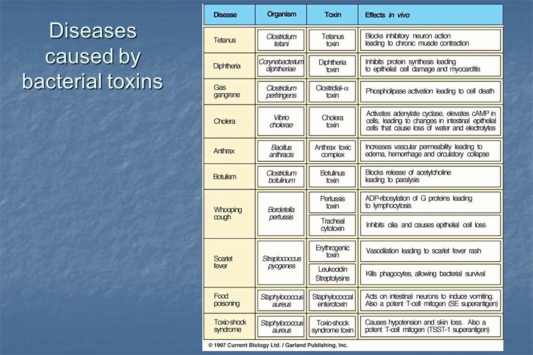 Diseases caused by bacterial toxins