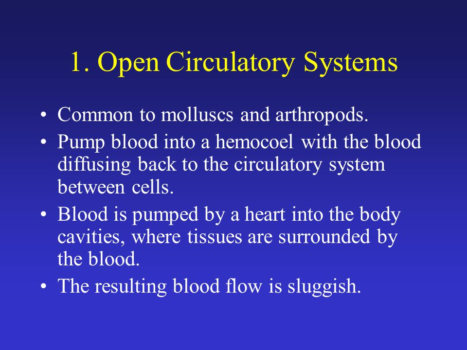 1. Open Circulatory Systems