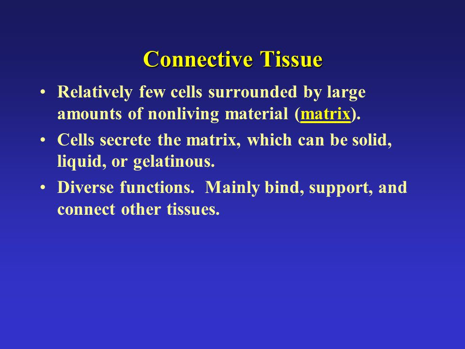 Connective Tissue Relatively few cells surrounded by large amounts of nonliving material (matrix).